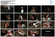 http://img252.imagevenue.com/loc187/th_344971059_AmazonWarriors_BellyStabbing4.wmv_123_187lo.jpg