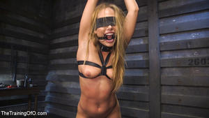 THE TRAINING OF O: January 3, 2017 – Tommy Pistol and Carter Cruise